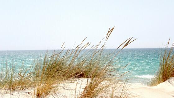 Comment allonger ses vacances malgré un nombre de jours limité?